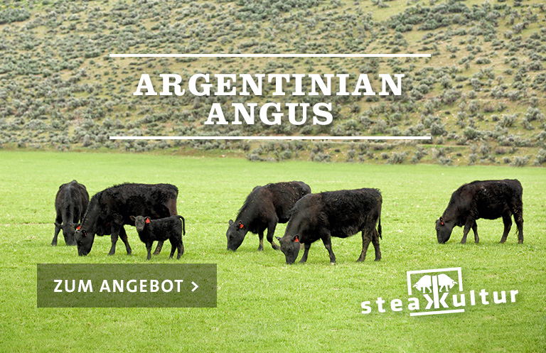 Argentinian Angus