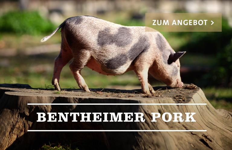 Bentheimer Pork