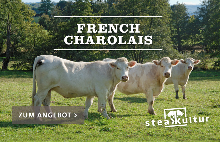 French Charolais