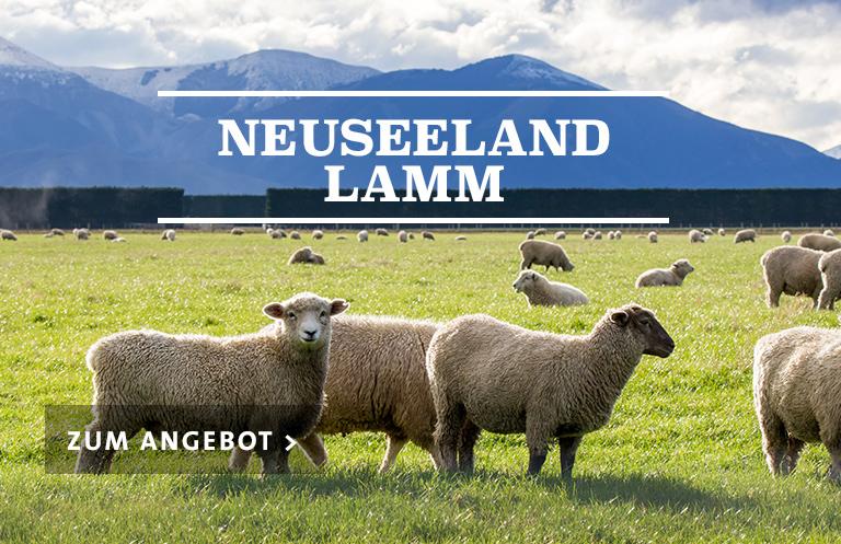 NZL Lamm