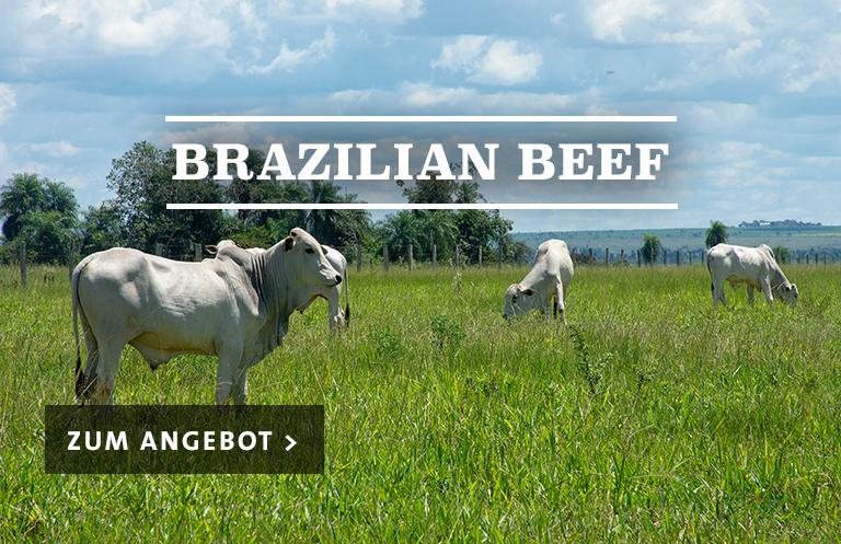 Brazilian Beef - Steakhaus für zu Haus'