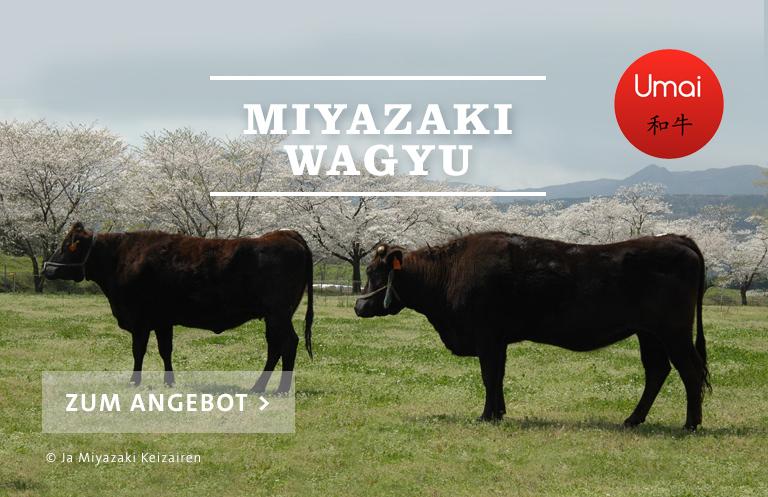 Miyazaki-Gyu Wagyu