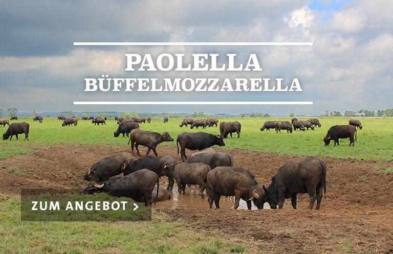 Paolella Büffel