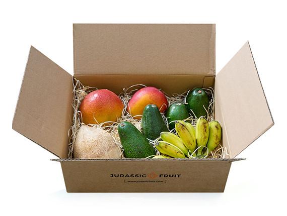 Jurassic Fruit Bestseller Box