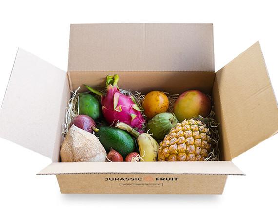 Entdeckerbox exotische Früchte