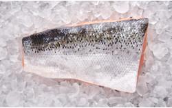 Norwegischer Lachs