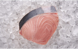 Blauflossen Thunfisch