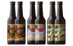 Mashsee Brauerei - Mix 6er Pack