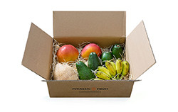 Jurassic Fruit Bestseller Box