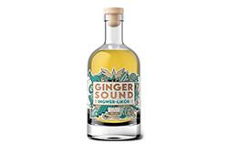 BIO Ginger Sound - Ingwer Likör