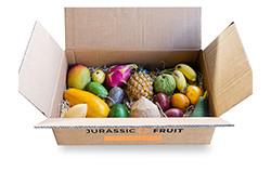 Entdeckerbox exotische Früchte groß